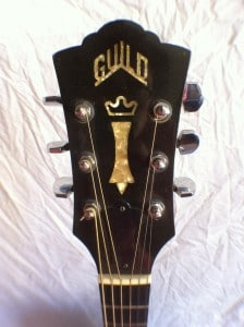 guild-d50-2
