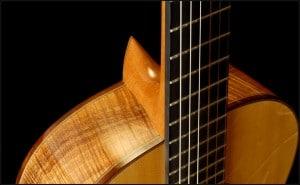 Plaque supérieure guitare folk